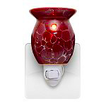 Specials: Plug-in Tart Warmer